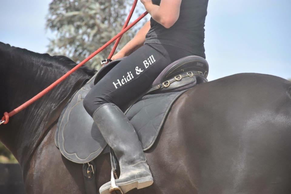 About My Horse Handbook