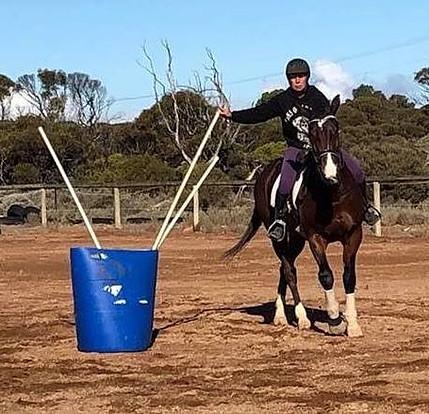 Working Equitation Australia