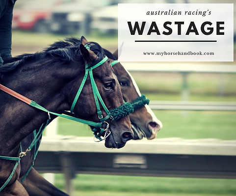 Race Horse Wastage