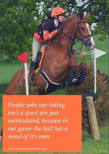 Are horses unpredictable?