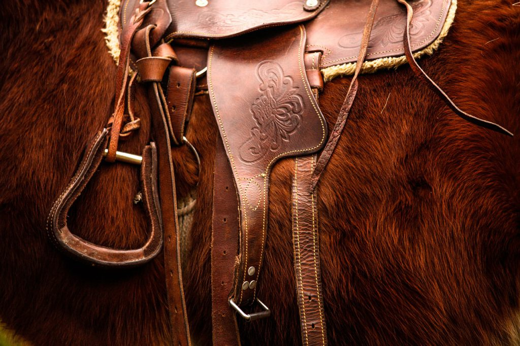 Saddle on furry chestnut horse