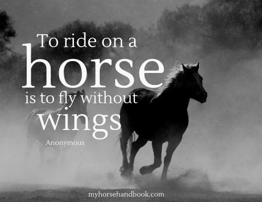 to-ride-on-a-horse-is-to-fly-without-wings – My Horse Handbook